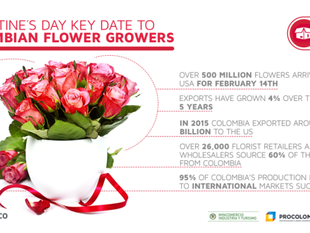 Valentine's day is an important date for Colombian exports (graphic courtesy ProColombia)