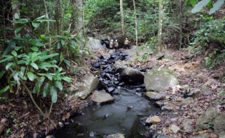 Guamalito disruption of the Caño Limón-Coveñas pipeline that cut oil production for Ecopetrol and damaged the environment. (Credit: Ecopetrol)