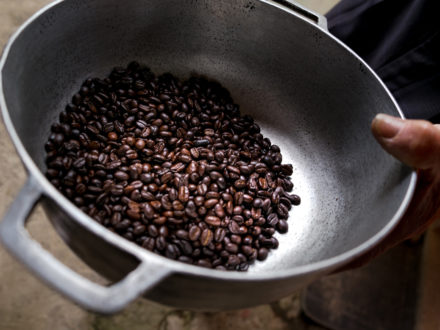 Coffee beans from Don Elias finca in Salento, Colombia. (Credit: Jared Wade)