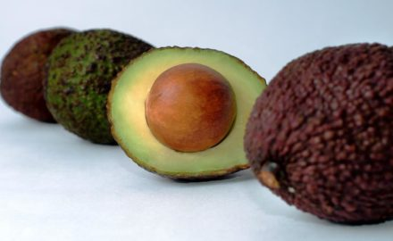 The Hass Avocado is known for its wrinkled skin and smaller size.